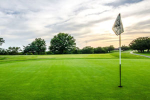 Green golf course with flag in hole.