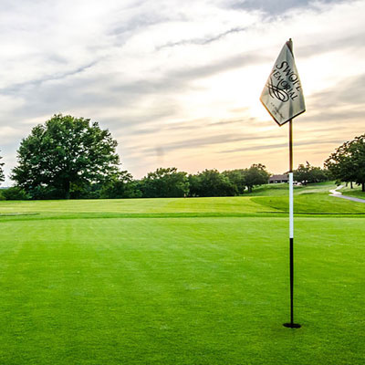 Green golf course with flag in the hole.